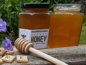 sydney-raw-honey-420-gram-jars