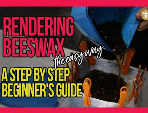 Rendering Beeswax The Easy Way: A Step by Step Beginner's Guide with Bruce White