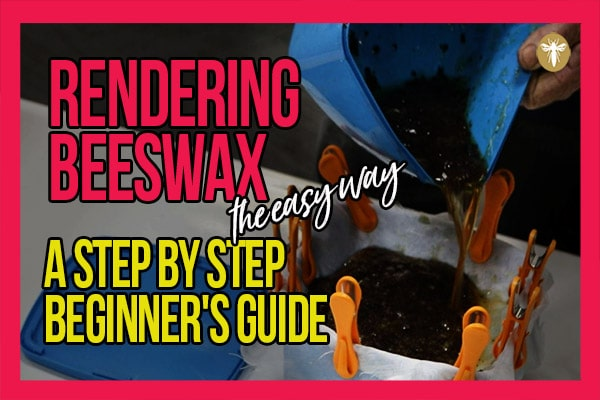 rendering-beeswax-the-easy-way-a-step-by-step-beginners-guide