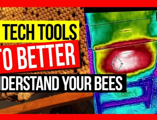 Hi Tech Tools to Better Understand Your Bees by Michael Syme