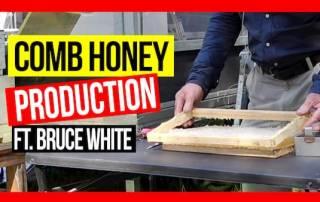comb-honey-production-ABA-field-day7