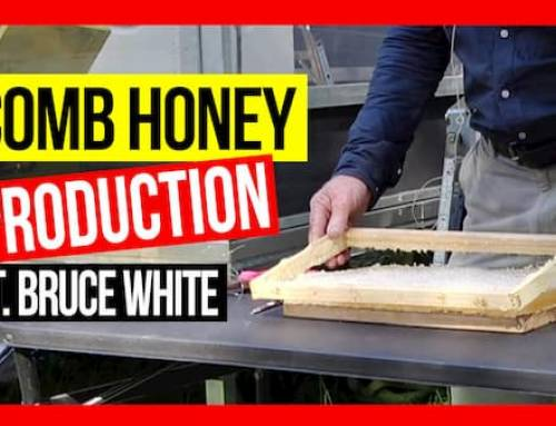 Comb Honey Production ft Bruce White | ABA of NSW Field Day 2019