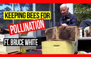 keeping-bees-for-pollination-ABA-field-day-web-thumbnail